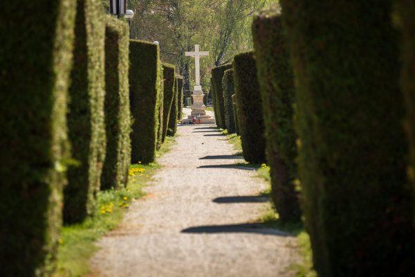 Gradsko groblje Križevci